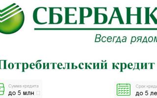 На каких условиях можно взять кредит в Сбербанке