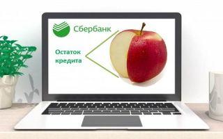 Как проверить остаток кредита в Сбербанке по номеру договора через интернет?