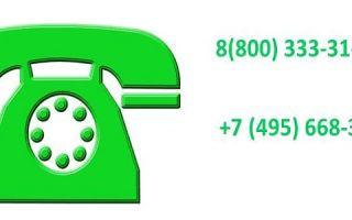 Телефон отдела кредитования физических лиц в Сбербанке