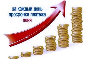 Максимальный размер пени за просрочку платежа по кредиту по закону