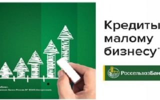 Кредит на развитие малого бизнеса в Россельхозбанке
