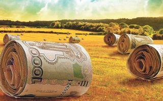 Субсидирование кредитов в сельском хозяйстве