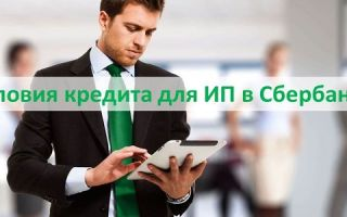 Условия кредита для ИП в Сбербанке