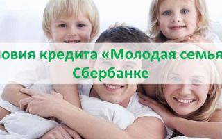 Условия кредита Молодая семья в Сбербанке