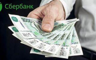 На какую сумму можно взять кредит без поручителей в Сбербанке