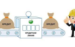 Кредитная линия Сбербанка для юридических лиц