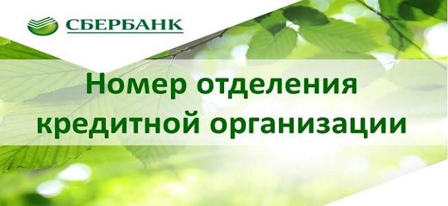 Наименование кредитной организации сбербанк