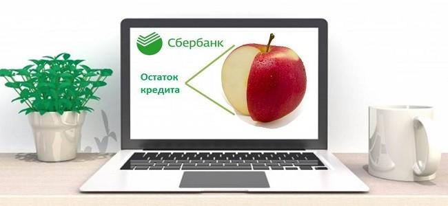 Как проверить остаток кредита в Сбербанке по номеру договора через интернет