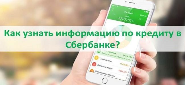 Как узнать информацию по кредиту в Сбербанке