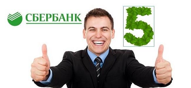 Что означает кредитный рейтинг 5 в Сбербанке